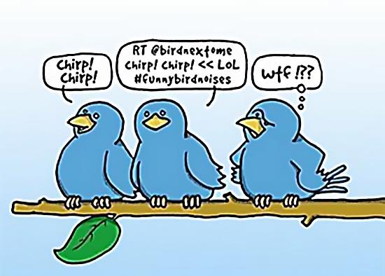 Social Media: WTF? | Animus Rex, Inc.