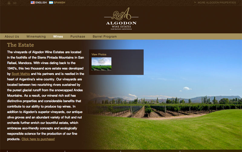 Algodon Wine Estates 02.jpg